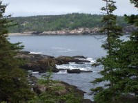 Highlight for Album: Acadia National Park Loop Drive